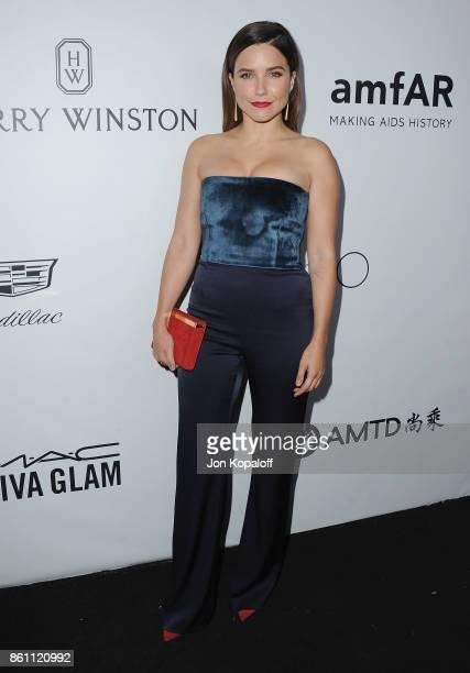 Actress Sophia Bush arrives at amfAR Los Angeles 2017 at Ron Burkleâs Green Acres Estate on October 13 2017 in Beverly Hills Californi