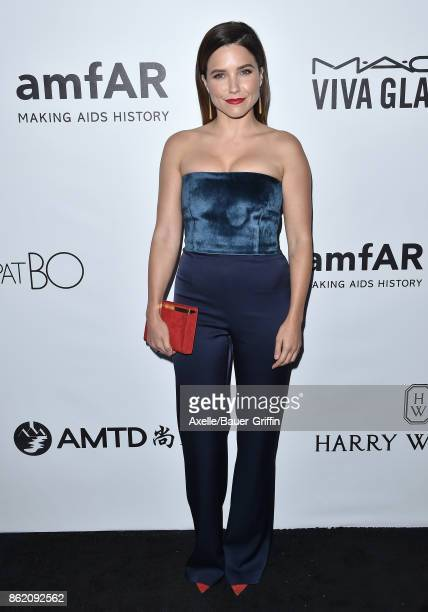 Actress Sophia Bush arrives at amfAR Los Angeles 2017 at Ron Burkle's Green Acres Estate on October 13 2017 in Beverly Hills California