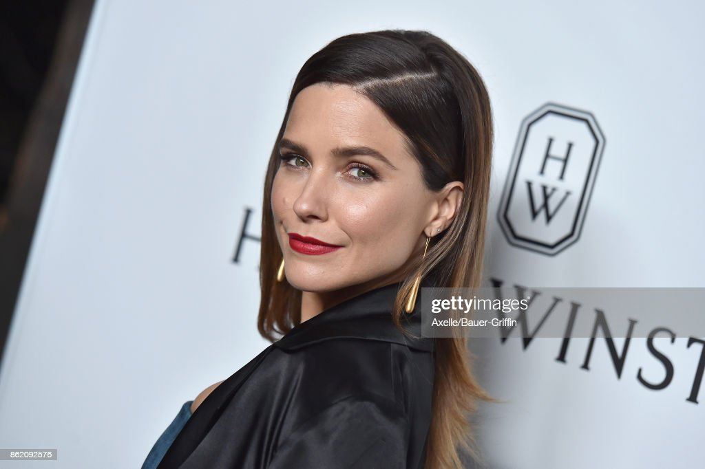 Actress Sophia Bush arrives at amfAR Los Angeles 2017 at Ron Burkle's Green Acres Estate on October 13, 2017 in Beverly Hills, California.