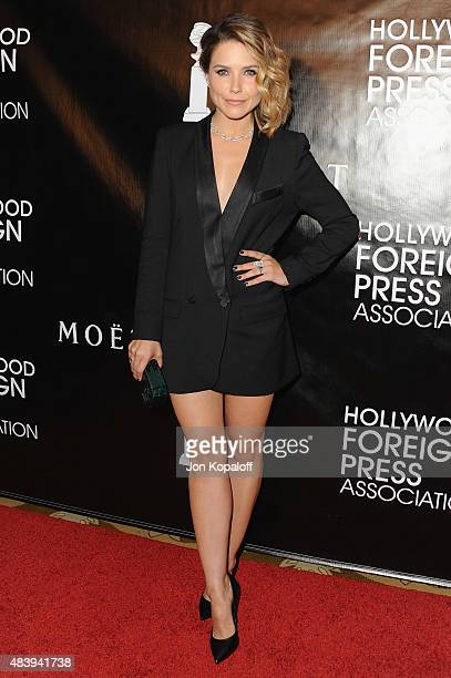Actress Sophia Bush arrives at Hollywood Foreign Press Association Hosts Annual Grants Banquet at the Beverly Wilshire Four Seasons Hotel on August...