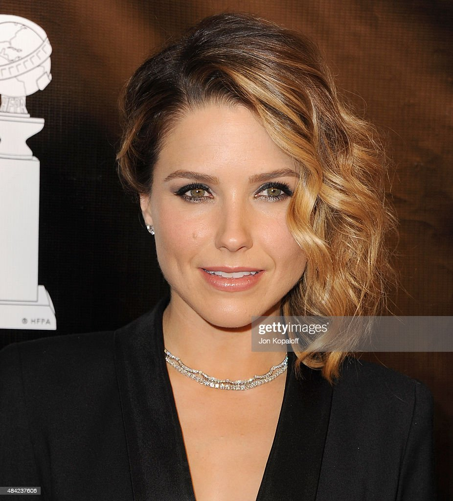 Actress Sophia Bush arrives at Hollywood Foreign Press Association Hosts Annual Grants Banquet at the Beverly Wilshire Four Seasons Hotel on August 13, 2015 in Beverly Hills, California.