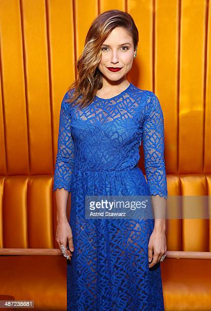 Actress Sophia Bush attends the 2014 National Dance Institute Annual Gala at Best Buy Theater on April 28 2014 in New York City