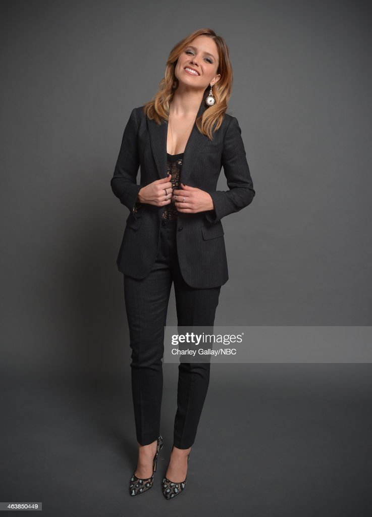 Actress <a gi-track='captionPersonalityLinkClicked' href=/galleries/search?phrase=Sophia+Bush&family=editorial&specificpeople=203180 ng-click='$event.stopPropagation()'>Sophia Bush</a> attends the 2014 NBCUniversal TCA Winter Press Tour Portraits at Langham Hotel on January 19, 2014 in Pasadena, California.