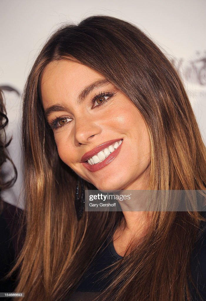 Actress Sophia Vergara attends the Artist Domingo Zapata VIP Art Reception at The Bowery Hotel on October 24, 2012 in New York City.
