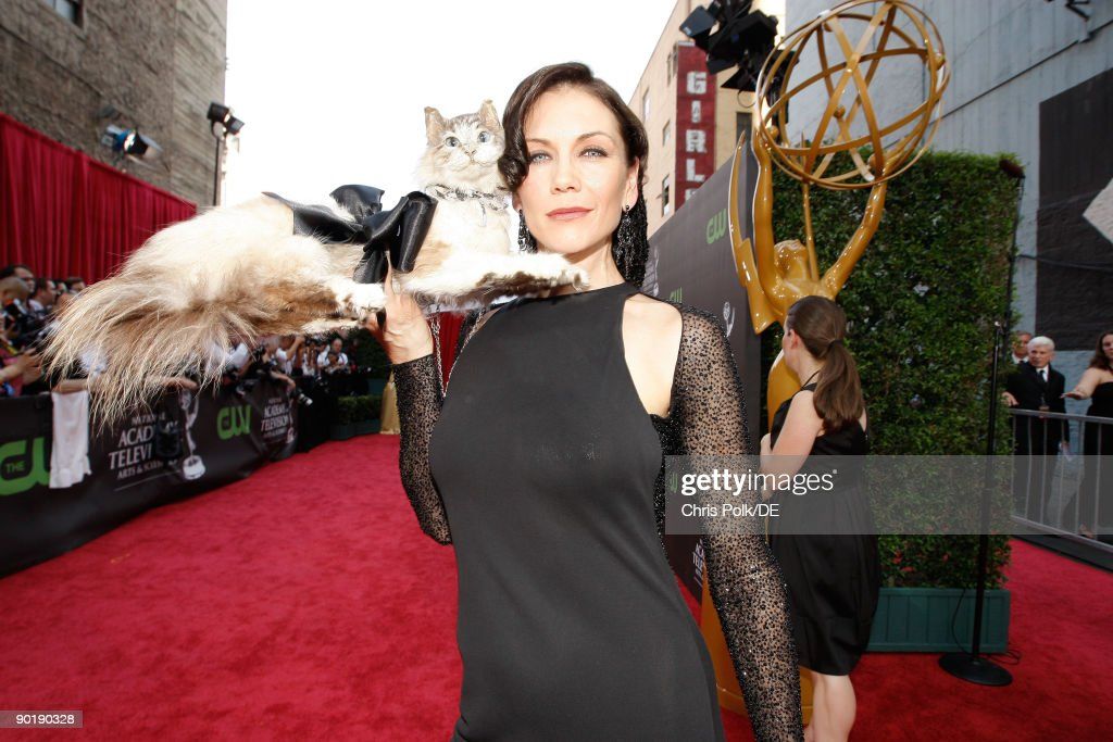 Actress Stacy Haiduk arrives at the 36th Annual Daytime Emmy Awards at The Orpheum Theatre on August 30, 2009 in Los Angeles, California.