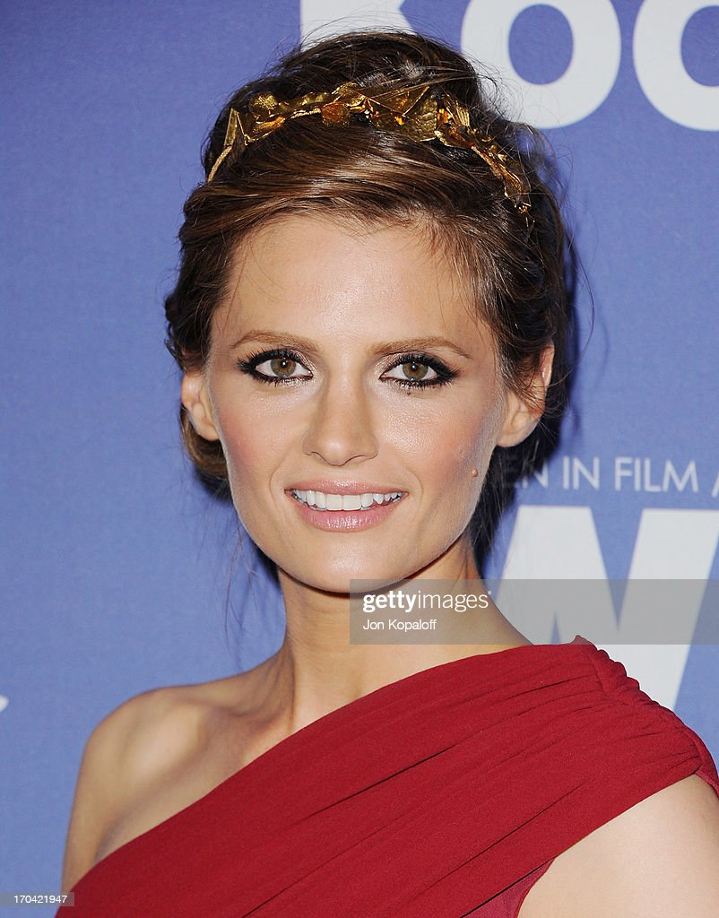 Actress Stana Katic arrives at the 2013 Women In Film's Crystal + Lucy Awards at The Beverly Hilton Hotel on June 12, 2013 in Beverly Hills, California.