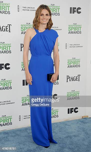 Actress Stana Katic arrives at the 2014 Film Independent Spirit Awards on March 1 2014 in Santa Monica California