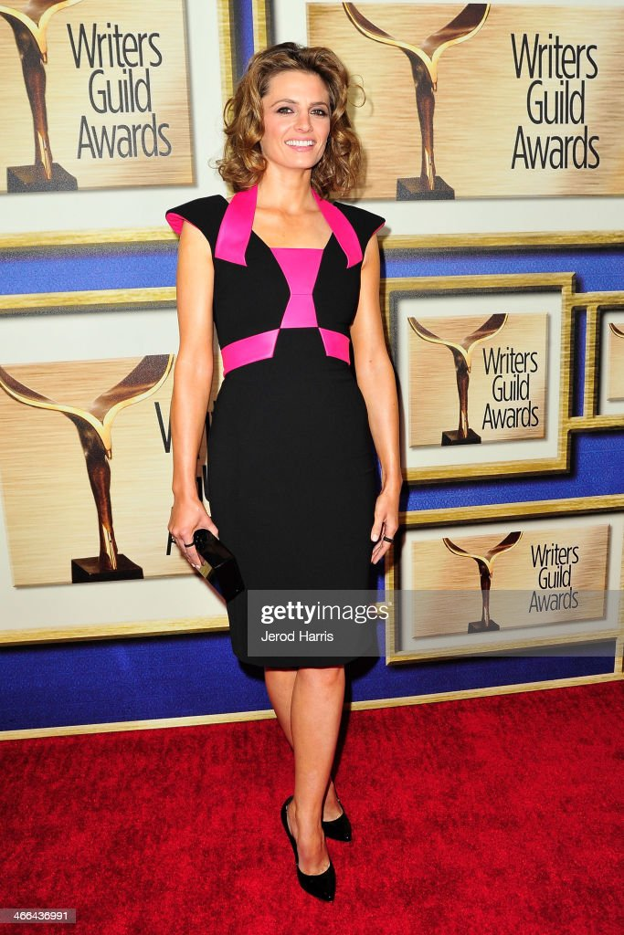 Actress <a gi-track='captionPersonalityLinkClicked' href=/galleries/search?phrase=Stana+Katic&family=editorial&specificpeople=2081035 ng-click='$event.stopPropagation()'>Stana Katic</a> arrives at the 2014 Writers Guild Awards L.A. Ceremony at JW Marriott Los Angeles at L.A. LIVE on February 1, 2014 in Los Angeles, California.