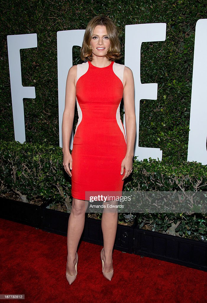 Actress <a gi-track='captionPersonalityLinkClicked' href=/galleries/search?phrase=Stana+Katic&family=editorial&specificpeople=2081035 ng-click='$event.stopPropagation()'>Stana Katic</a> arrives at the Los Angeles premiere of 'Mandela: Long Walk To Freedom' at ArcLight Cinemas Cinerama Dome on November 11, 2013 in Hollywood, California.