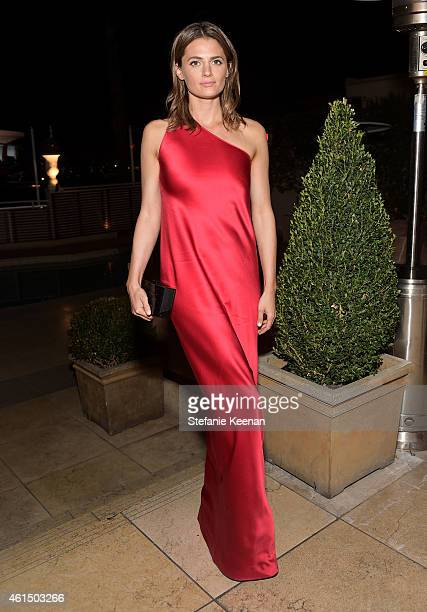 Actress Stana Katic attends ELLE's Annual Women in Television Celebration on January 13 2015 at Sunset Tower in West Hollywood California Presented...