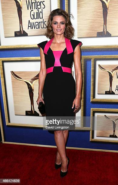 Actress Stana Katic attends the 2014 Writers Guild Awards LA Ceremony at JW Marriott Los Angeles at LA LIVE on February 1 2014 in Los Angeles...