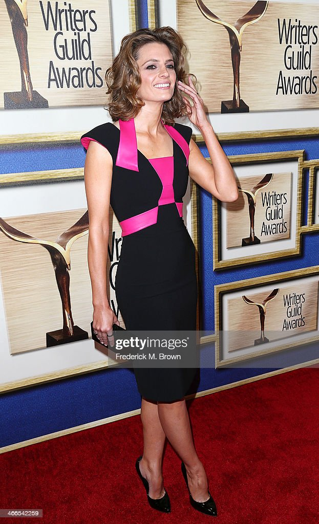 Actress <a gi-track='captionPersonalityLinkClicked' href=/galleries/search?phrase=Stana+Katic&family=editorial&specificpeople=2081035 ng-click='$event.stopPropagation()'>Stana Katic</a> attends the 2014 Writers Guild Awards L.A. Ceremony at the JW Marriott Los Angeles at L.A. LIVE on February 1, 2014 in Los Angeles, California.