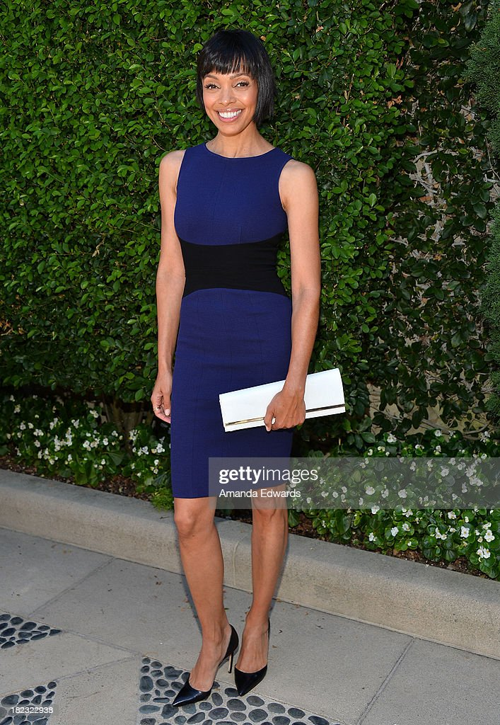 Actress <a gi-track='captionPersonalityLinkClicked' href=/galleries/search?phrase=Tamara+Taylor+-+Actress&family=editorial&specificpeople=737015 ng-click='$event.stopPropagation()'>Tamara Taylor</a> attends The Rape Foundation's Annual Brunch at Greenacres on September 29, 2013 in Beverly Hills, California.