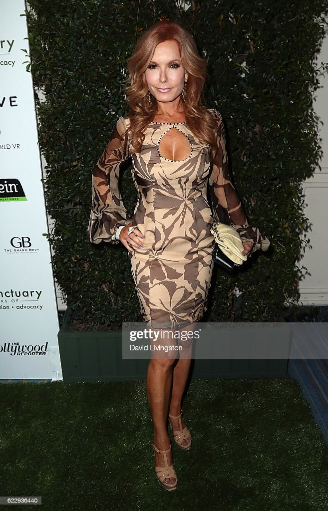 Actress Tracey E. Bregman attends the Farm Sanctuary's 30th Anniversary Gala at the Beverly Wilshire Four Seasons Hotel on November 12, 2016 in Beverly Hills, California.