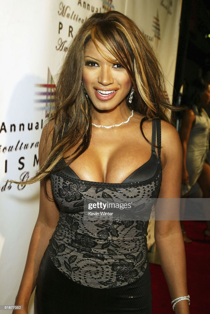 Actress Traci Bingham arrives at the 9th Annual Multicultural Prism Awards at the Henry Fonda 'Music Box' Theatre on December 17, 2004 in Los Angeles, California.