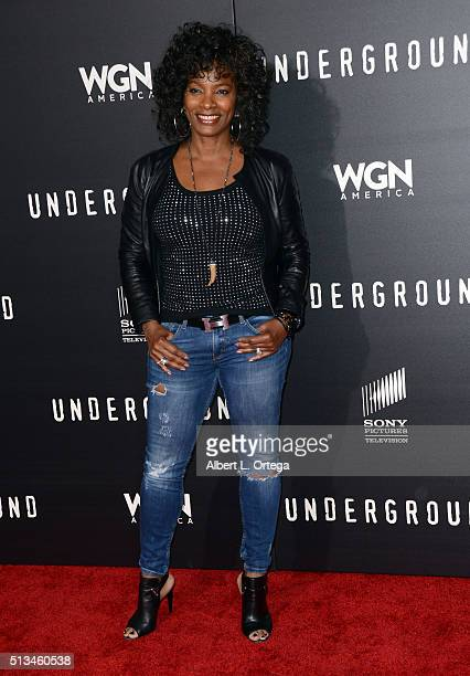 Actress Vanessa Bell Calloway arrives for the Premiere Of WGN America's 'Underground' held at The Theatre At The Ace Hotel on March 2 2016 in Los...