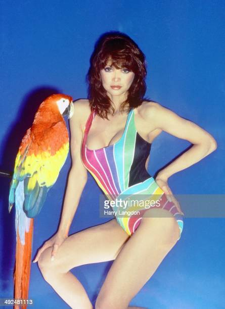 Actress Victoria Principal poses for a portrait in 1982 in Los Angeles California