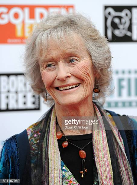 Actress Virginia McKenna attend the UK film premiere of 'Golden Years' at the Odeon Tottenham Court Road on April 14 2016 in London England