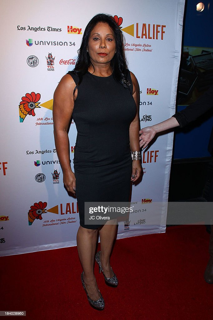 Actress Wanda De Jesus attends The 2013 Los Angeles Latino International Film Festival - Opening Night Gala Premiere of 'Pablo' at the El Capitan Theatre on October 10, 2013 in Hollywood, California.