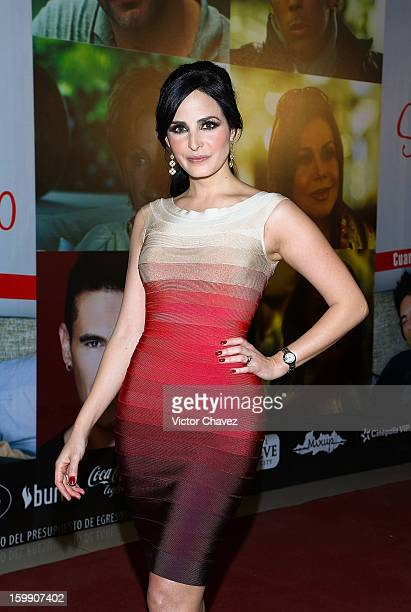 Actress Ximena Herrera attends the '7 Anos de Matrimonio' Mexico City premiere red carpet at Plaza Carso on January 22 2013 in Mexico City Mexico