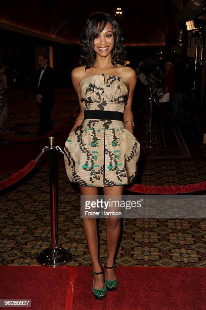 Actress Zoe Saldana arrives at the 62nd Annual Directors Guild Of America Awards at the Hyatt Regency Century Plaza on January 30 2010 in Century...