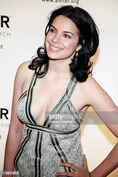 Actress Zuleikha Robinson attends the 10th annual amfAR New York Gala on January 31 2008 at the 42nd Street Cipriani in New York City