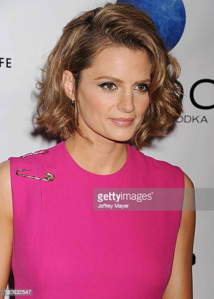 Actress/model Stana Katic arrives at the 'CBGB' Special Screening at ArcLight Cinemas on October 1 2013 in Hollywood California