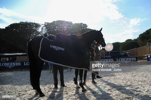 Ad Rackham 'Jo backstage during the Longines Grand Prix Athina Onassis Horse Show on June 3 2017 in St Tropez France