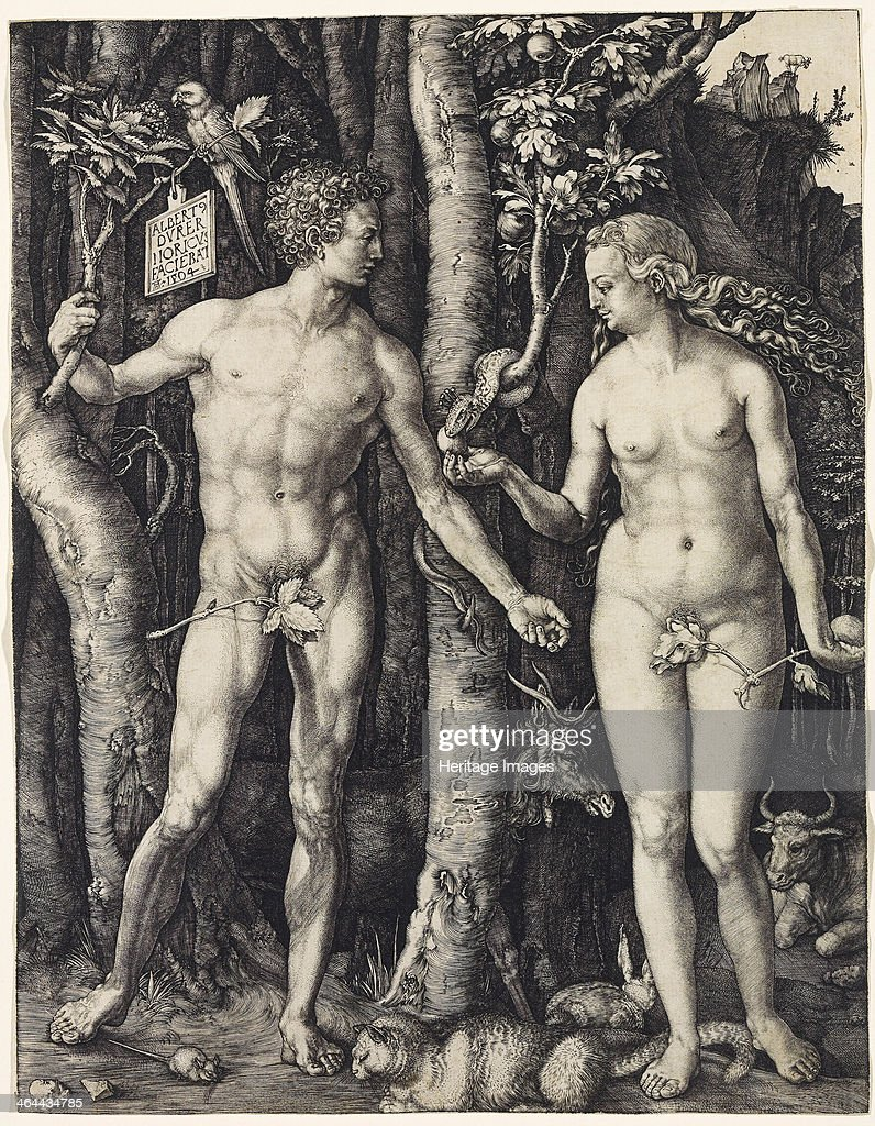 Adam and Eve, 1504. Found in the collection of the Rijksmuseum, Amsterdam.