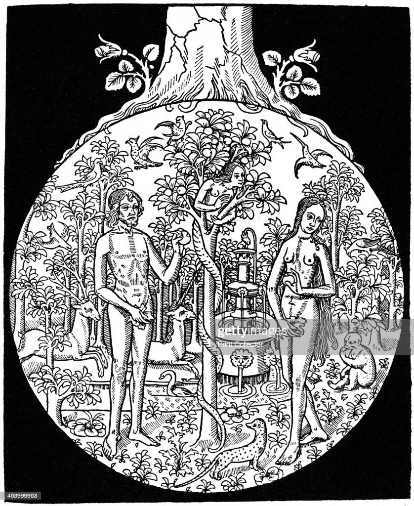Adam and Eve 1505 from Antoine Vérard's Bible en Francoys A print from A History of Wood Engraving by Douglas Percy Bliss Spring Books London 1964