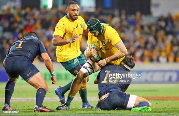 Adam Coleman of the Wallabies runs with the ball during The Rugby Championship match between the Australian Wallabies and the Argentina Pumas at...