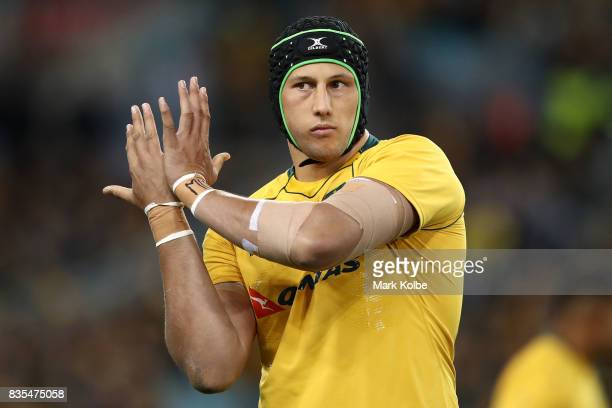 Adam Coleman of the Wallabies warms up before kickoff in The Rugby Championship Bledisloe Cup match between the Australian Wallabies and the New...