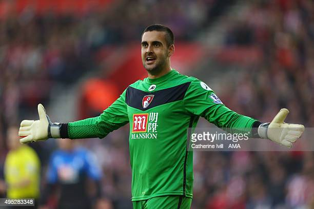 Adam Federici of Bournemouth reacts during the Barclays Premier League match between Southampton and AFC Bournemouth at St Mary's Stadium on November...