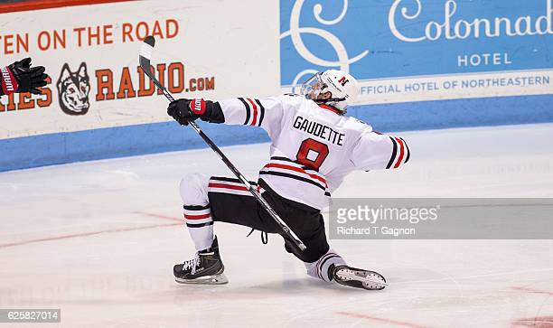 Adam Gaudette of the Northeastern Huskies celebrates his goal against the Minnesota Golden Gophers during NCAA hockey at Matthews Arena on November...