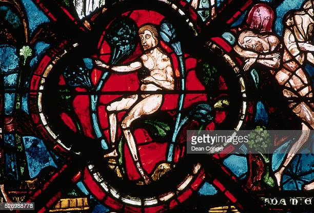 Adam in the Garden of Eden From the Parable of the Good Samaritan Lancet Window at Chartres Cathedral