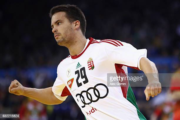 Adam Juhasz of Hungary celebrates a goal during the 25th IHF Men's World Championship 2017 match between Belarus and Hungary at Kindarena on January...