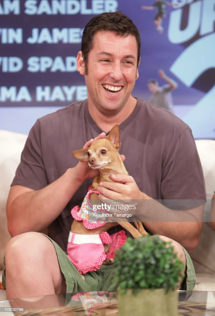 <a gi-track='captionPersonalityLinkClicked' href=/galleries/search?phrase=Adam+Sandler&family=editorial&specificpeople=202205 ng-click='$event.stopPropagation()'>Adam Sandler</a> of 'Grown Ups 2' cast appears on Univision's 'Despierta America' to promote the movie at Univision Headquarters on July 8, 2013 in Miami, Florida.