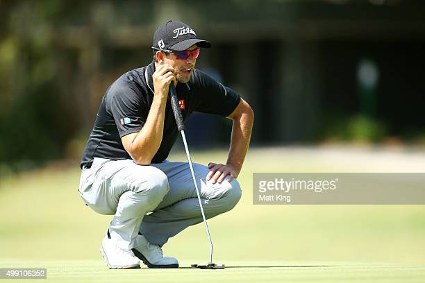 Adam Scott of Australia lines up a putt on the 14th green during day four of the Australian Open at The Australian Golf Club on November 29 2015 in...