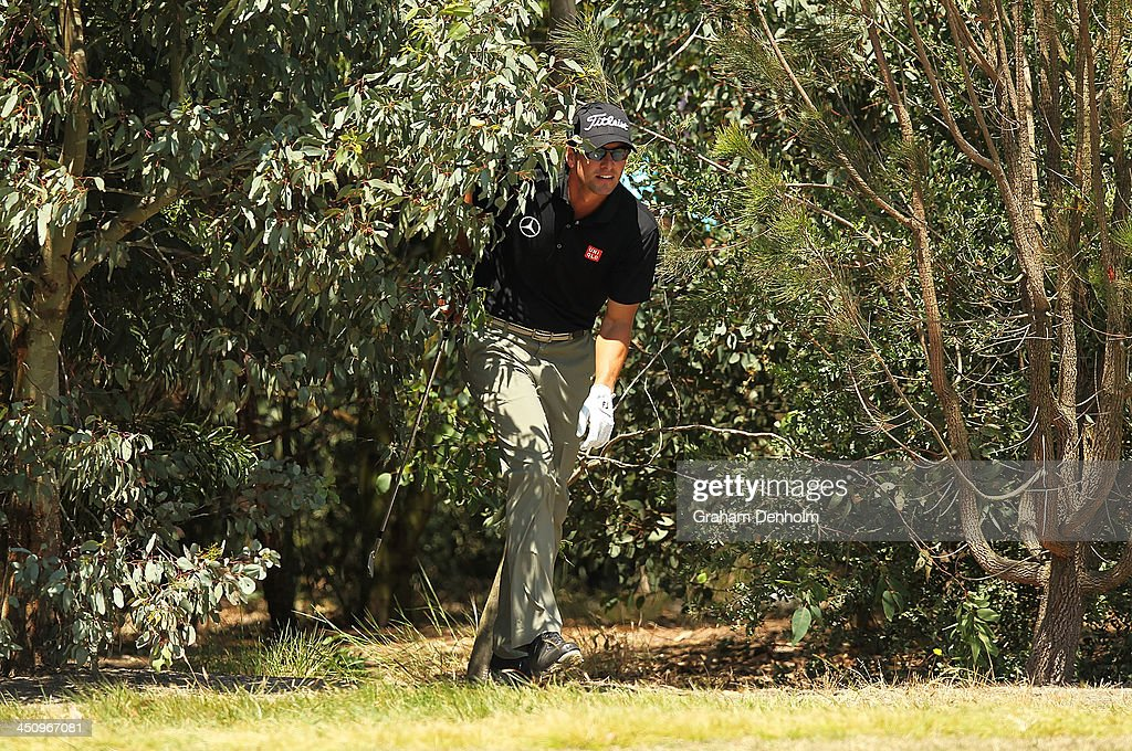 Adam Scott of Australia searches for his ball in the rough during day one of the World Cup of Golf at Royal Melbourne Golf Course on November 21, 2013 in Melbourne, Australia.