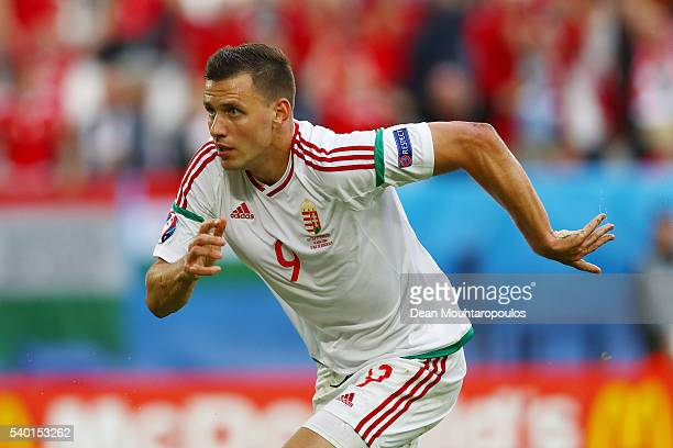 Adam Szalai of Hungary celebrates scoring his team's first goal during the UEFA EURO 2016 Group F match between Austria and Hungary at Stade Matmut...
