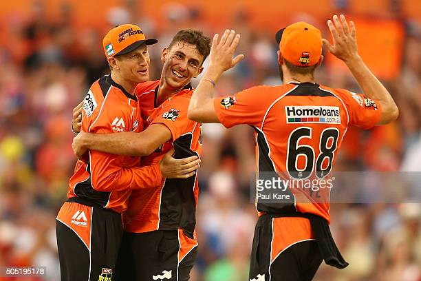 Adam Voges and Matt Dixon of the Scorchers celebrates the dismissal of Peter Handscomb of the Stars during the Big Bash League match between the...