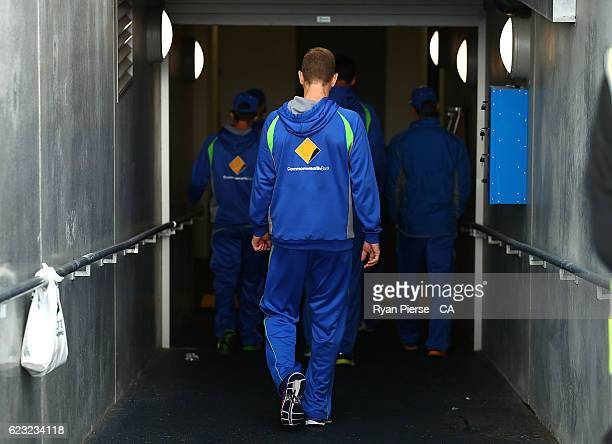Adam Voges of Australia leaves the ground after day four of the Second Test match between Australia and South Africa at Blundstone Arena on November...
