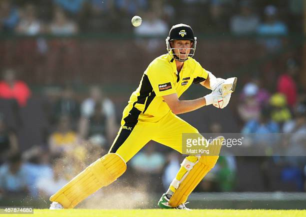 Adam Voges of the Warriors bats during the Matador BBQs One Day Cup Final match between Western Australia and New South Wales at Sydney Cricket...