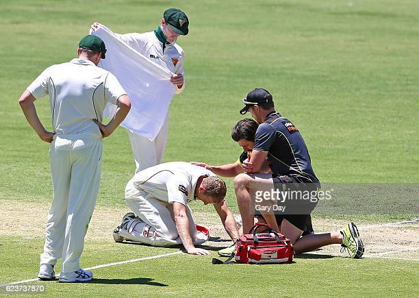 Adam Voges of the Warriors receives treatment after being struck in the head by a bouncer from Cameron Stevenson during day one of the Sheffield...