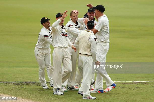 Adam Voges of Western Australia is congratulated by team mates after dismissing William Somerville of New South Wales during the Sheffield Shield...
