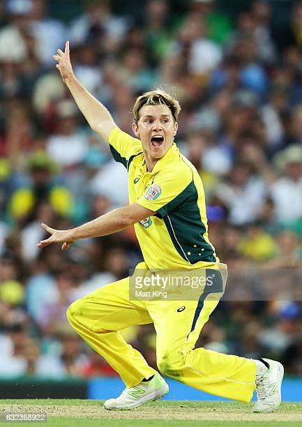 Adam Zampa of Australia appeals during game four of the One Day International series between Australia and Pakistan at Sydney Cricket Ground on...