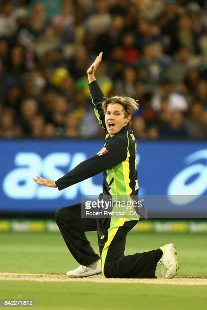 Adam Zampa of Australia appeals unsuccessfully during the first International Twenty20 match between Australia and Sri Lanka at Melbourne Cricket...