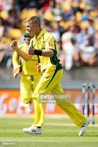 Adam Zampa of Australia celebrates the wicket of Kane Williamson of New Zealand during game two of the one day international series between New...