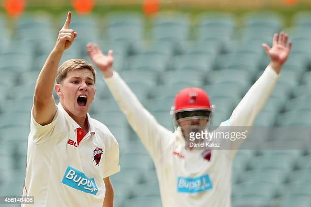 Adam Zampa of the Redbacks appeals during day one of the Sheffield Shield match between South Australia and Queensland at Adelaide Oval on October 31...