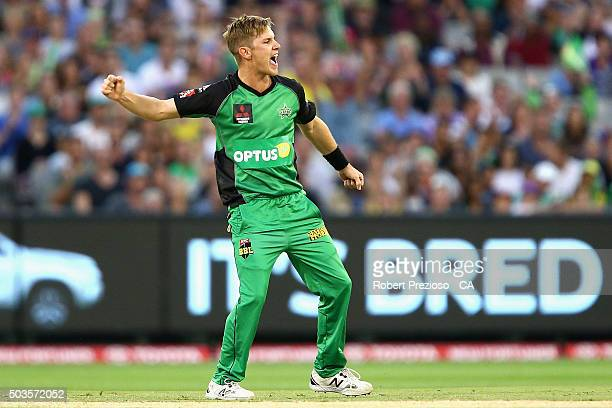 Adam Zampa of the Stars celebrates the wicket of George Bailey of the Hurricanes during the Big Bash League match between the Melbourne Stars and the...